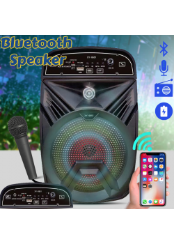 Karaoke High Bass Wireless Bluetooth Speaker With Micro SD / TF / USB Flash And FM Radio Support, XY-0651